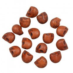 Brown Gothic Skull Beads Dyed Turquoise (12mm) - PK16