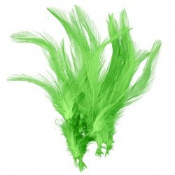 Dyed Green Craft Feathers Jewellery Making 120mm (PK20)